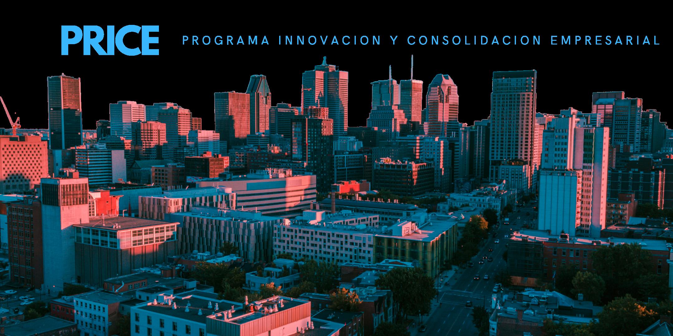 programa innovación y consolidación empresarial